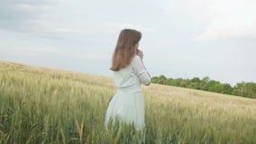 Menina nova bonita do russo entre os spikelets verdes altos do trigo no campo Jovem mulher que aprecia o verão, harmonia da human video estoque