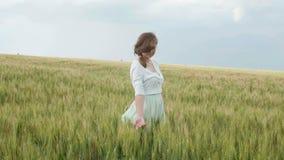 Menina nova bonita do russo entre os spikelets verdes altos do trigo no campo Recolhe os spikelets nos pacotes O enj da menina vídeos de arquivo