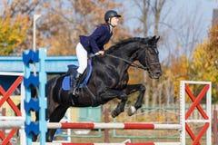 Menina nova do cavaleiro no cavalo que salta sobre o obstáculo imagem de stock royalty free