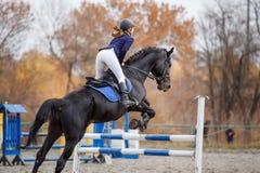 Menina nova do cavaleiro no cavalo que salta sobre o obstáculo imagem de stock