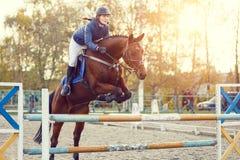 Menina nova do cavaleiro no salto da mostra Salte o obstáculo Fotografia de Stock Royalty Free