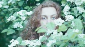 Menina nova do ruivo em flores da mola laço vídeos de arquivo