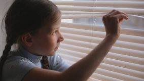 A menina olha as cortinas no sol de ajuste vídeos de arquivo