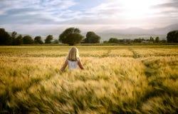 Menina ou passeio adolescente através do campo de trigo Imagens de Stock Royalty Free