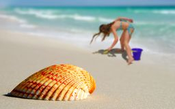 Menina pelo Seashell solitário na praia fotos de stock royalty free
