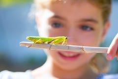 Menina pequena do miúdo que olha o mantis praying Imagem de Stock Royalty Free