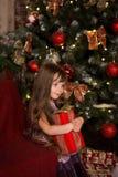 Menina perto de uma árvore de Natal com um presente em suas mãos Fotografia de Stock Royalty Free