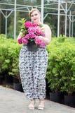 A menina positiva do tamanho mantém o potenciômetro com a planta de florescência na estufa Fotos de Stock