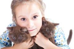 Menina que abraça delicadamente dois gatinhos de Ingleses da castanha Imagens de Stock Royalty Free
