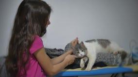 Menina que afaga carícias um gato que encontra-se em uma tábua de passar a ferro a amizade da menina e do gato pet o vídeo de mov video estoque