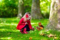 Menina que alimenta um esquilo no parque do outono Imagens de Stock Royalty Free
