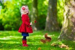 Menina que alimenta um esquilo no parque do outono Foto de Stock Royalty Free