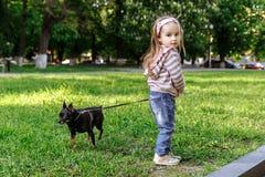 Menina que anda com um cão Fotografia de Stock