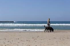 Menina que anda com um cão ao longo da costa imagem de stock