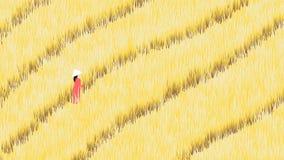 Menina que anda na exploração agrícola madura do campo do arroz ilustração do vetor