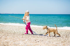 Menina que anda na praia com um terrier do cachorrinho fotografia de stock royalty free