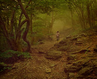 Menina que anda nas madeiras nevoentas Fotografia de Stock Royalty Free