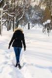 Menina que anda no parque da neve do inverno Imagem de Stock Royalty Free