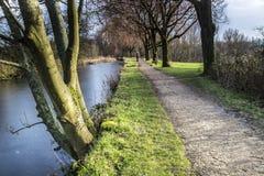 Menina que anda seu cão em Daisy Nook Country Park, Oldham fotos de stock royalty free