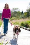 Menina que anda um cão Foto de Stock Royalty Free