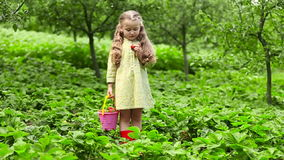 Menina que come morangos video estoque