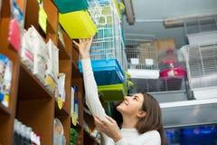 Menina que compra a gaiola de pássaro no petshop Imagens de Stock Royalty Free