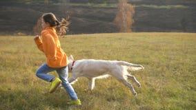 Menina que corre com o golden retriever no campo vídeos de arquivo