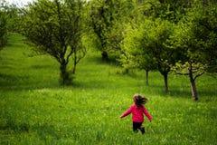 Menina que corre em um pomar da ameixa da mola Imagens de Stock