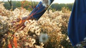 A menina que corre no campo do outono através do fluff floresce filme