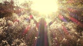 A menina que corre no campo do outono através do fluff floresce video estoque