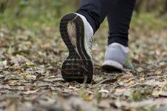 Menina que corre no parque, outono Fotografia de Stock Royalty Free
