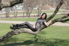 Menina que encontra-se em um ramo de árvore Fotos de Stock