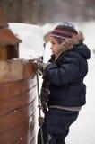 Menina que escala uma escada de corda Fotos de Stock Royalty Free