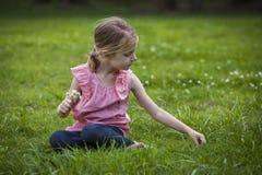 Menina que escolhe Flowoers selvagem Fotografia de Stock Royalty Free