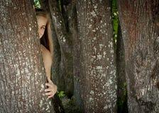 Menina que esconde atrás de uma árvore Imagens de Stock Royalty Free