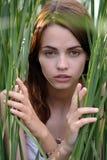 Menina que esconde nos juncos Imagens de Stock Royalty Free