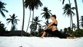 Menina que estica a ioga na manhã nas palmeiras no alvorecer vídeos de arquivo