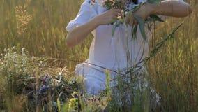 Menina que faz o circlet da flor no prado no por do sol na natureza video estoque
