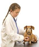 Menina que finge ser um veterinário Fotografia de Stock Royalty Free