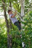 Menina que grita na árvore Imagens de Stock