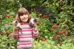 Menina que guarda gatinhos Imagem de Stock Royalty Free