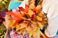Menina que guarda o ramalhete bonito do outono foto de stock royalty free