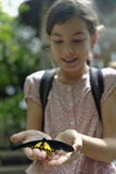 Menina que guarda uma borboleta Fotos de Stock Royalty Free