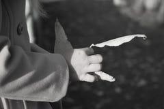 menina que guarda uma folha do outono foto de stock royalty free