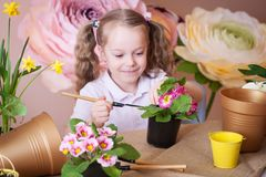 Menina que importa-se com flores em um vaso de flores foto de stock