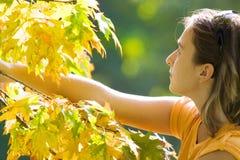 Menina que joga com as folhas Foto de Stock Royalty Free