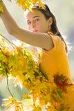 Menina que joga com as folhas Imagens de Stock