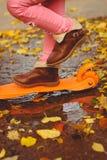 Menina que joga com as folhas de outono no parque Foto de Stock Royalty Free