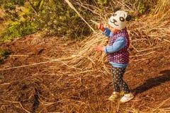 Menina que joga com grama da pena em uma caminhada Fotos de Stock