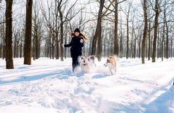 Menina que joga com os cães na neve Imagem de Stock